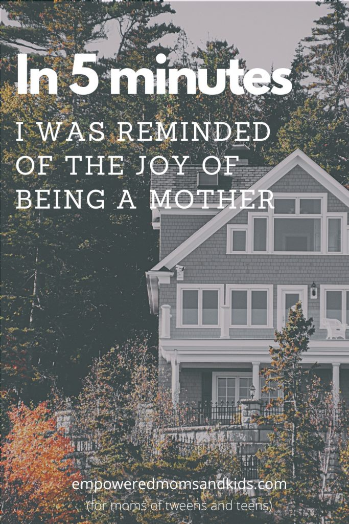 the joy of being a mother